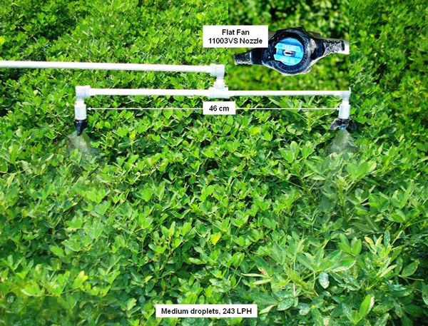 Interactive Effects of Fungicide, Application Timing and Spray Volume on Peanut Diseases and Yield